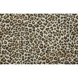 Image of Stark Studio Rugs, Wildlife, Sahara, 10' X 14' For Sale
