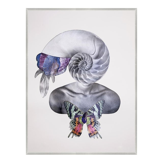 Spiral Into Her Art Print in Walnut Frame For Sale