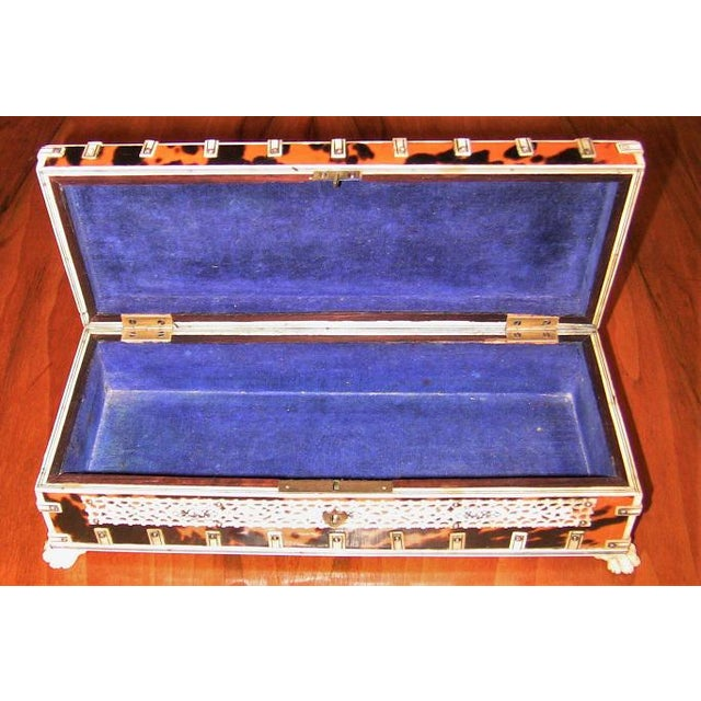 Late 19th Century 19c Anglo Indian Vizagapatam Bone and Shell Glove Box For Sale - Image 5 of 7