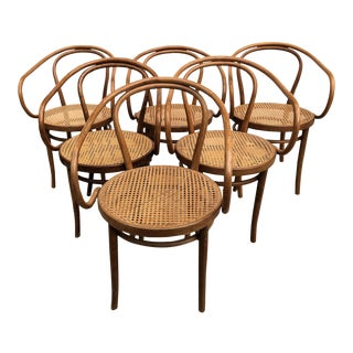 Vintage Thonet 209 Style Chairs- Set of 6 For Sale