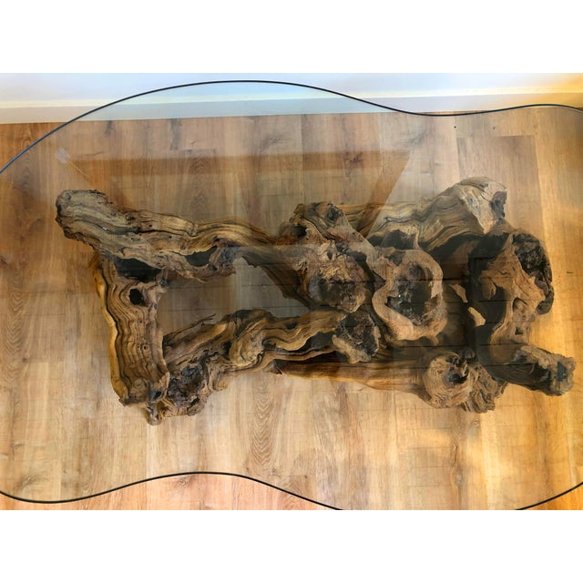 1960s Vintage Burl Wood Root and Tempered Glass Coffee Table. For Sale - Image 5 of 10