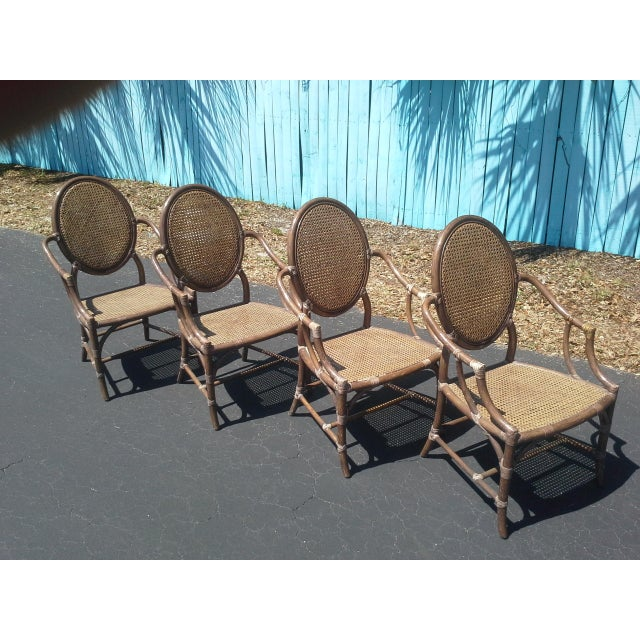 John and Elinor McGuire McGuire Louis XVI Cane Seat Chairs - Set of 4 For Sale - Image 4 of 9