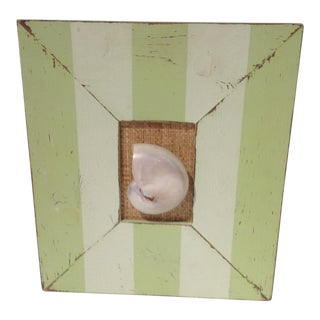 Boho Chic Specimen Polish Nautilus Shell Green Stripe Picture Frame For Sale