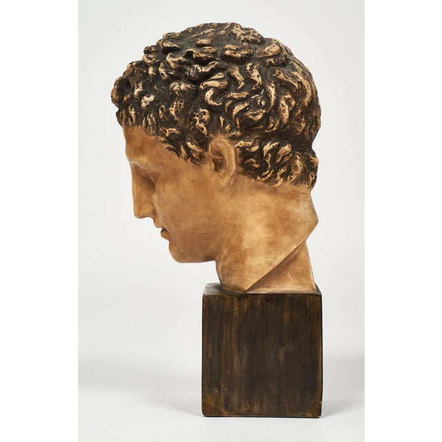 French Vintage Hermes Bust For Sale - Image 10 of 12