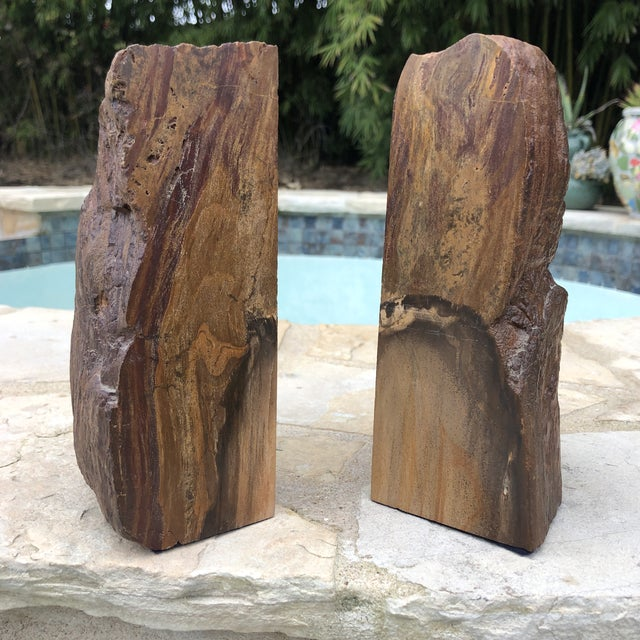 Prehistoric Polished and Natural Petrified Wood Bookends - a Pair For Sale - Image 4 of 13