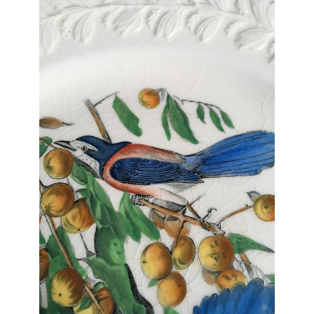 Florida Jay Adams England Transferware Ceramic Plate - Image 4 of 11
