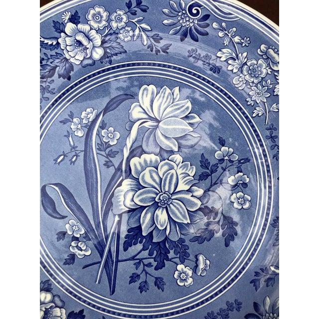 Spode Large Spode Blue Room Collection Botanical Plate/Platter For Sale - Image 4 of 7