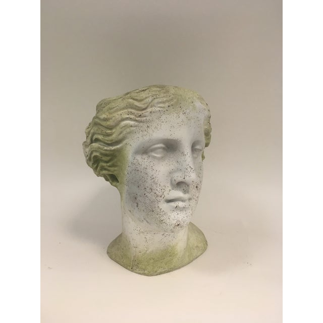 Faux weathered and moss concrete Greek bust of the head of Venus planter. Fill the head with your favorite greenery and...