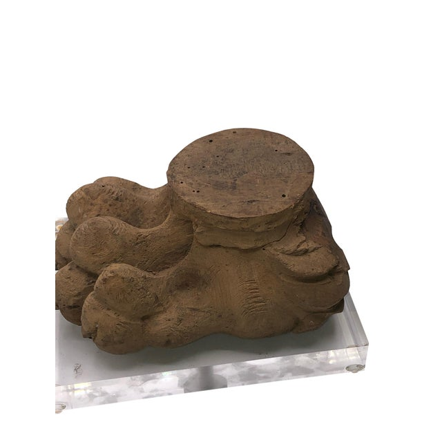 Early 19th Century Antique Mounted Paw Fragment For Sale - Image 5 of 8