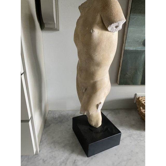 Beautiful plaster sculpture of a male body on a black wood stand.