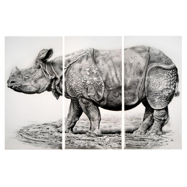 """Contemporary Contemporary """"Indian Rhino"""" Rick Shaefer Charcoal Print For Sale - Image 3 of 3"""