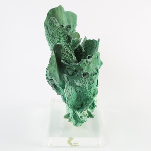 Contemporary VINTAGE GREEN CORAL SPECIMEN MOUNTED ON A LUCITE STAND For Sale - Image 3 of 10