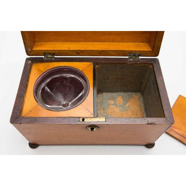 19th Century Satinwood Teacaddy For Sale - Image 9 of 11