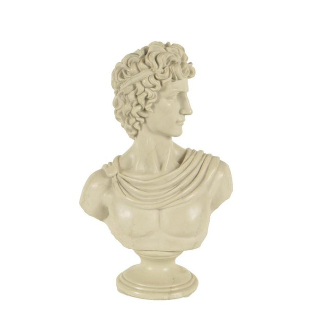 Plastic Contemporary Resin Bust After Apollo Belvedere For Sale - Image 7 of 7