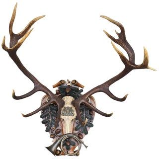 German Red Stag From Eulenburg Hunt of 1892 Trophy For Sale