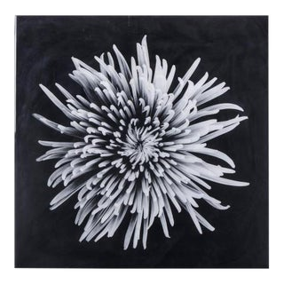 Contemporary Black & White Flower Epoxy Wall Art For Sale