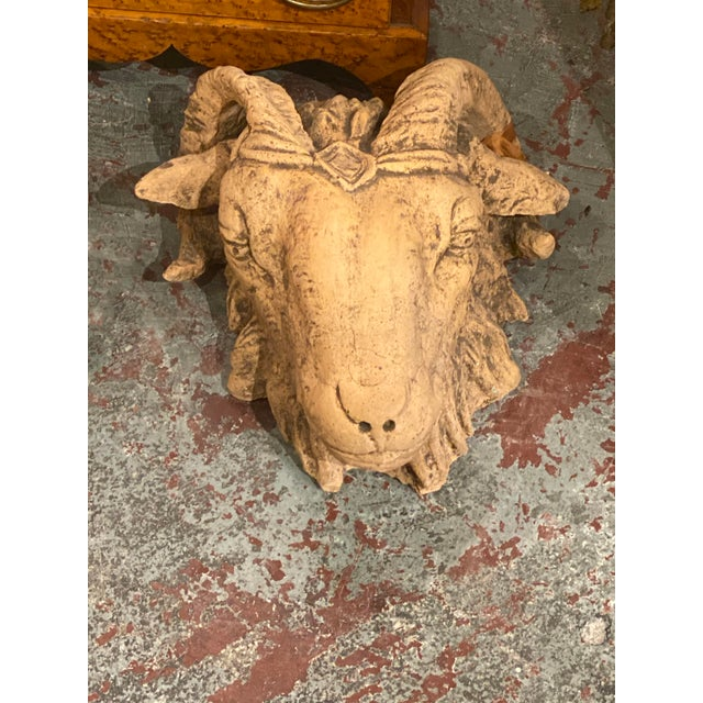 French Terra Cotta Rams Head For Sale - Image 4 of 6