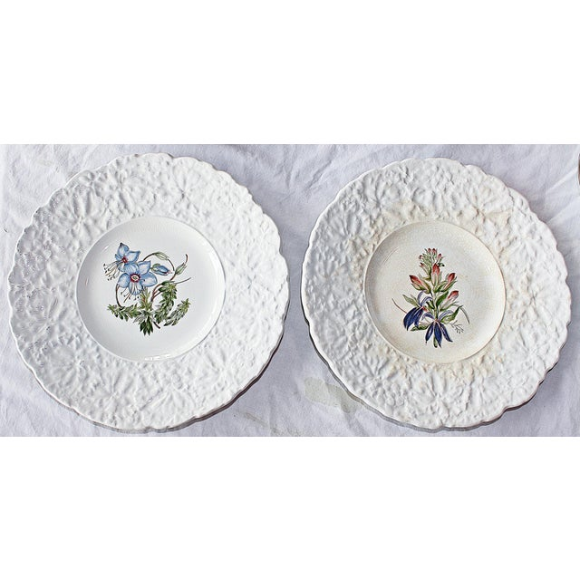 Royal Couldon Dessert Plates, Set of 8 For Sale - Image 5 of 8
