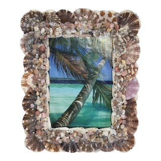2018 Shell Encrusted Picture Frame for Wall or Tabletop for 5x7 Picture For Sale