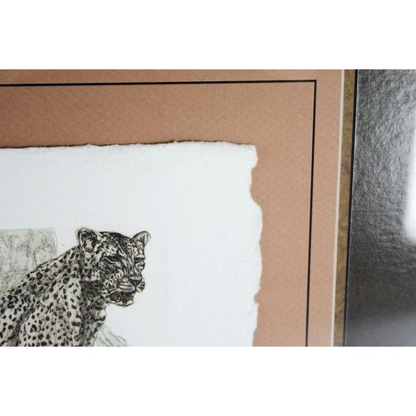 Hand-Colored Cheetah Engraving by Victor Hohne - Image 5 of 7