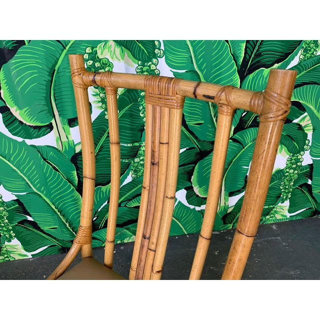 Bentwood Rattan Dining Chairs - Set of 6 For Sale - Image 6 of 8