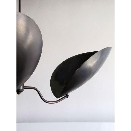 """Chiton"" Three Arm Brass Chandelier - Image 5 of 9"
