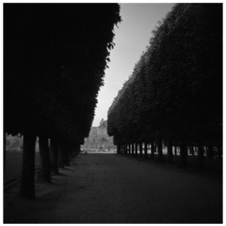 """Luxumburg Light"" Photograph"