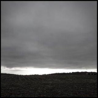 Stephen Ciuccoli, 'Cornfield', 2012 For Sale