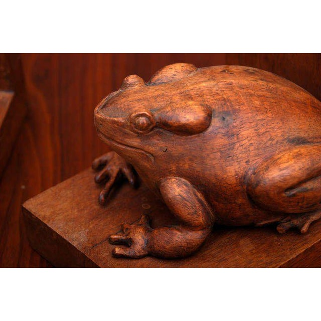 Pair of Frogs Bookends Hand-Carved in Mahogany For Sale In San Diego - Image 6 of 6
