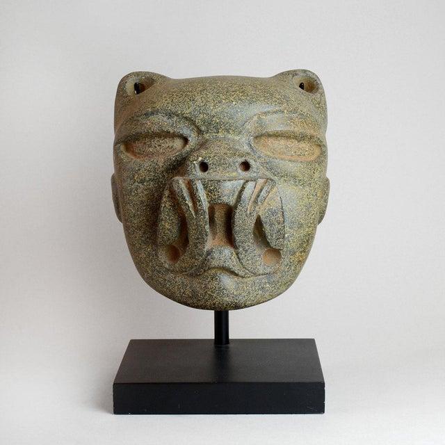 Olmec Stone Jaguar Head For Sale In Los Angeles - Image 6 of 6
