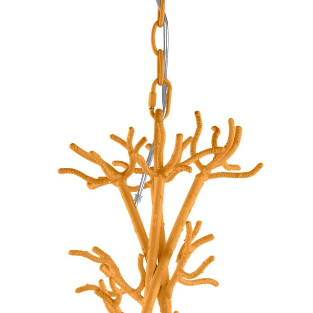Traditional Calypso Chandelier, Dash of Curry For Sale - Image 3 of 4