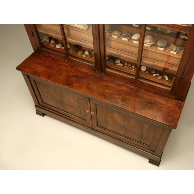 Brown French Specimen Cabinet or Bookcase, circa 1891 For Sale - Image 8 of 11