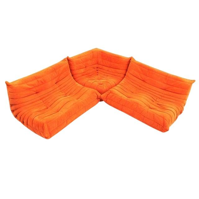 Michel Ducaroy for Ligne Roset Orange Togo Sofas - Set of 3 - Image 1 of 11