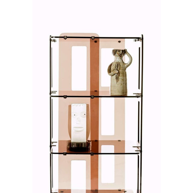 Boris Tabacoff 1970s French Lucite Bookcase in the Manner of Boris Tabacoff For Sale - Image 4 of 8