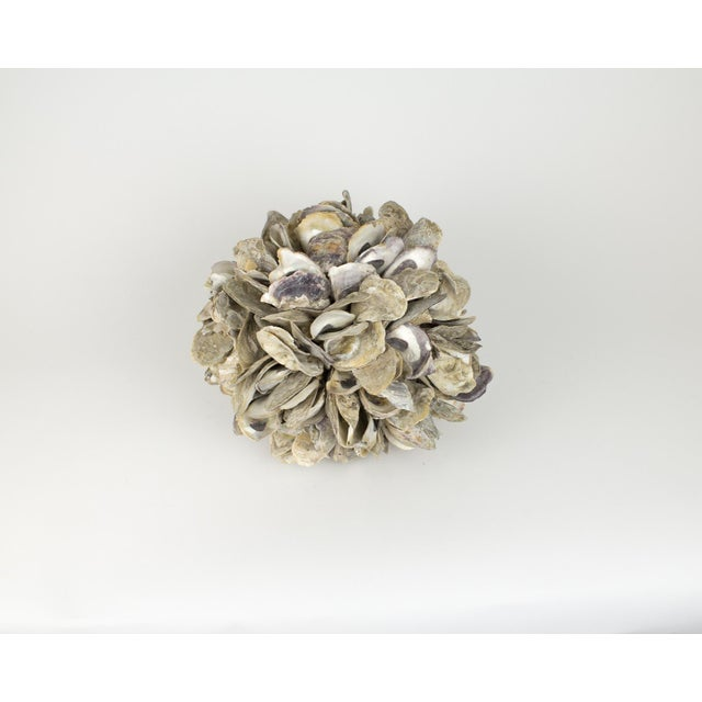 Anglo-Indian Large Natural Oyster Shell Sphere Sculpture For Sale - Image 3 of 10