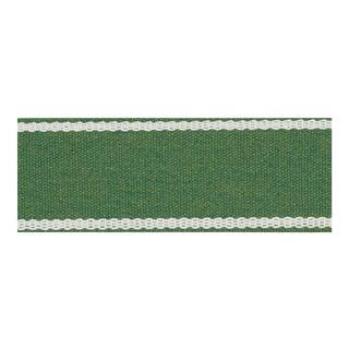 Schumacher Sullivan Tape Trim in Green For Sale