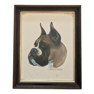 Mid Century 1950s Sharon Blane Lithograph Boxer Dog Animal Portrait Framed For Sale