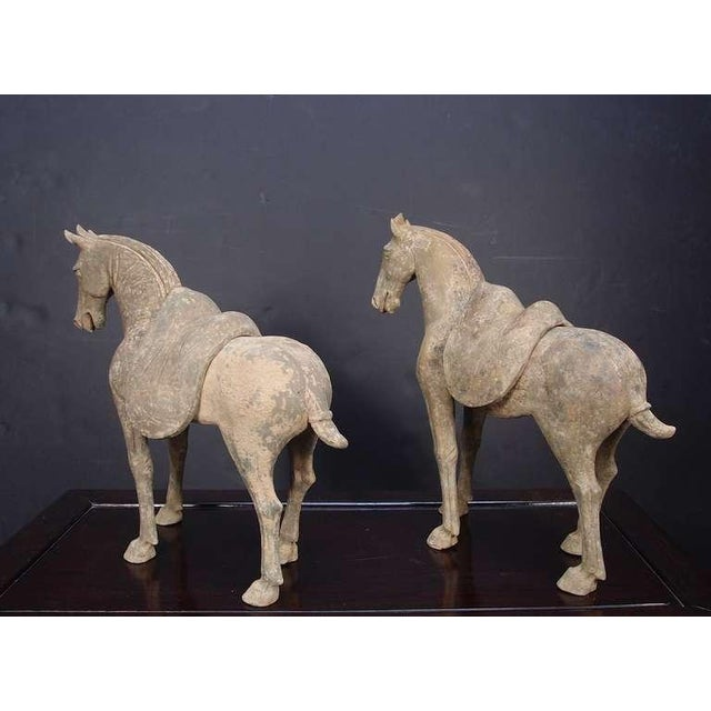 Pair Early Tang Dynasty Grey Pottery Striding Horses with Removable Saddles For Sale - Image 4 of 8