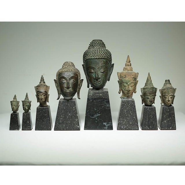 19th Century Collection of Mounted Bronze Thai Buddha Heads, Circa 1800s For Sale - Image 13 of 13