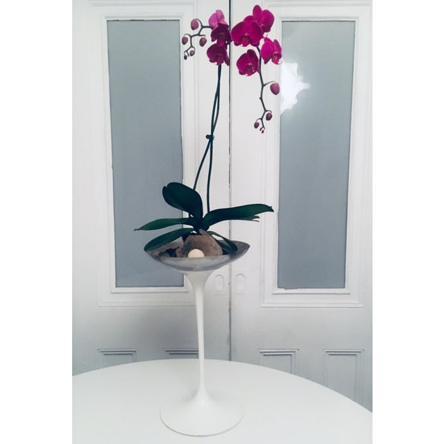 Knoll 1950s Eero Saarinen for Knoll Tulip Plant Stand Planter Catchall Ashtray Eames Era For Sale - Image 4 of 7