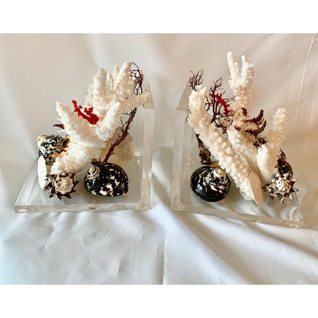 Christa's South Seashells Lucite and Shell Bookends - a Pair For Sale - Image 4 of 5
