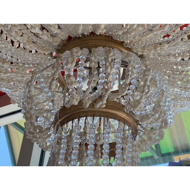 """French 64"""" Crystals and Shells 9 Light Coastal Chandelier For Sale - Image 9 of 13"""