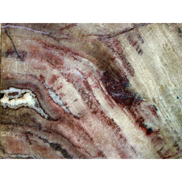Large Petrified Wood Bookends - a Pair - Image 9 of 11