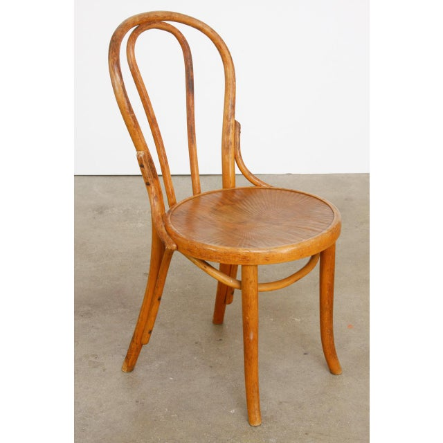 Michael Thonet No. 18 Bentwood Viennese Cafe Chairs - a Pair For Sale - Image 10 of 13