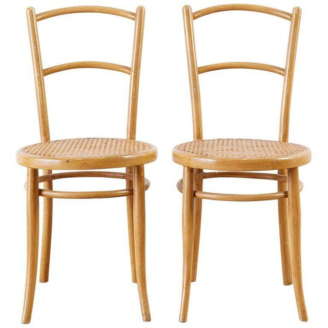 Pair of J. And J. Kohn Austrian Bentwood and Cane Chairs For Sale - Image 13 of 13