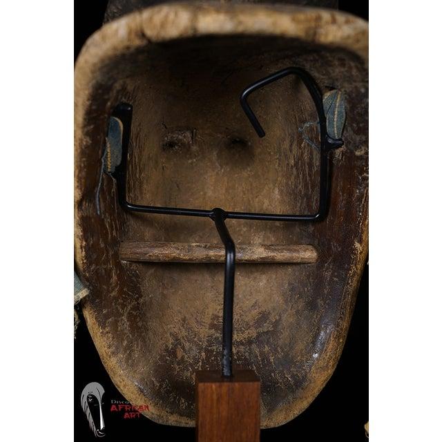 Baule African Tribal Portrait Mask - Image 7 of 10
