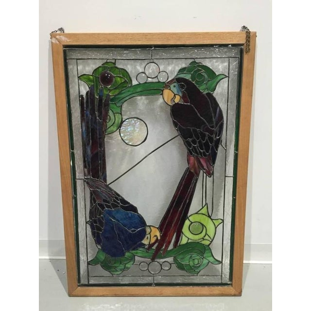 Stained glass of two parrots in wood frame. Having many vibrant colors. Givings a gorgeous look in any home.