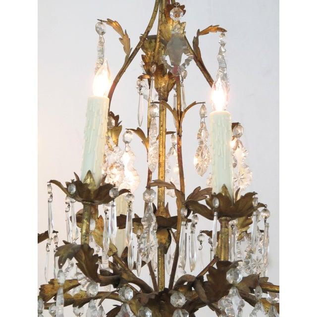 An elegant Italian 1960's Hollywood regency 8-light gilt-tole chandelier For Sale - Image 4 of 5