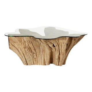 Modern Weathered Teak Root Glass Top Coffee Table For Sale