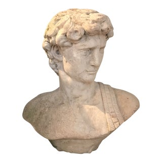 Neoclassical Life Size Bust in Concrete and Marble Dust After the David With White Pedestal. For Sale